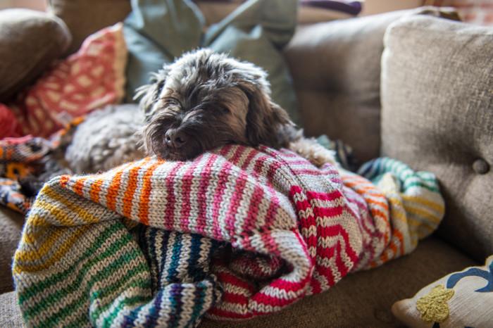 blanket + kubrick